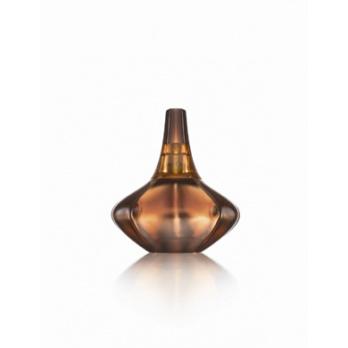 Calvin Klein Secret Obsession parfémová voda